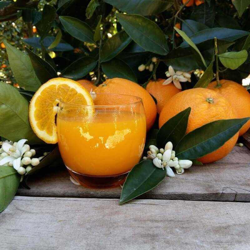 Naranjas Zumo Pequeño 15kg