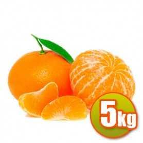 Mandarinen 5kg