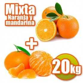 Mixte de grosses oranges et mandarina