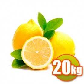 Citrons 20Kg